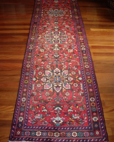 Old Perian Luri runner